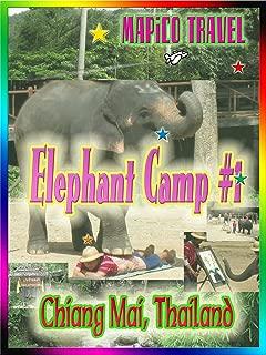 Clip: Travel Thailand Chiang Mai Maesa Elephant Camp #1