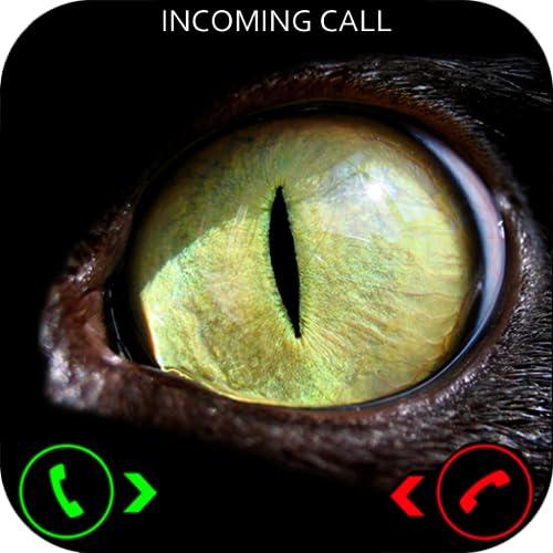 Evil Cat Prank Call