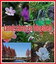 Landschap en bloemen