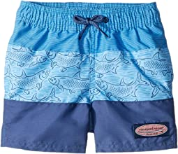 f7128c6e030f6 Search Results. Jake Blue. 12. Vineyard Vines Kids. Tarpon Sketch Pieced Chappy  Trunks ...