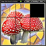 Magic Slide Puzzle - Mushrooms 1