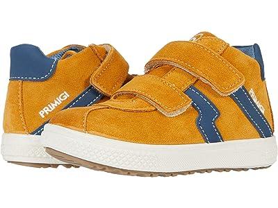 Primigi Kids 63609 (Toddler) (Tan/Blue) Boy