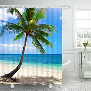 Martine Mall Beach Shower Curtains, Hawaii Ocean Shower Curtains, Exotic Hawaii Beach Water and Coconut Palm Tree by The Shore Bath Curtain Shower Set with 12 Free Hooks for Bathroom