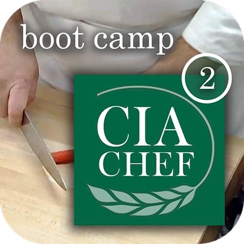 CIA Boot Camps 2