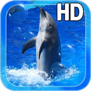 Best dolphin live wallpaper Reviews
