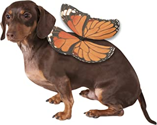Rubies Costume Co Monarch Butterfly Wings Dog Costume, Small/Medium