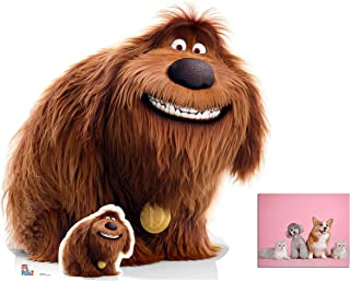 Duke from The Secret Life of Pets 2 Official Cardboard Cutout/Standup Fan Pack, 110cm x 107cm Includes Free Mini Cutout and 8x10 Photo