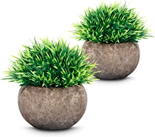 Artificial Plants (2 pcs), Mini Fake Plants with Air Purifying, Small Potted Plastic Green Grass for Farmhouse Home Kitchen Living/Bathroom and Office Decor (2019 New Version)