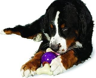 buddy dog biscuits