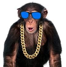 Amazing Talking Monkey