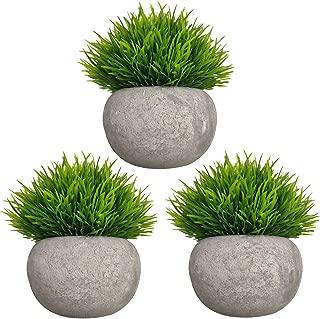 Best decorative artificial grass plants Reviews