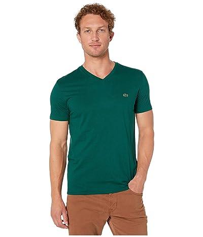 Lacoste Short Sleeve Pima Jersey V-Neck T-Shirt (Beeche) Men