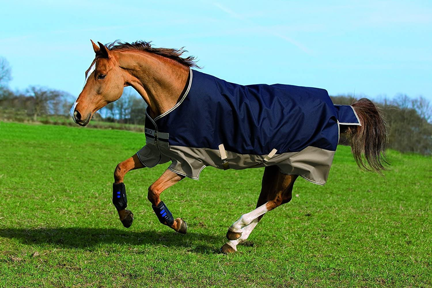 Horseware Mio Lite Turnout 45 Black Turquois High quality new Be super welcome Sheet