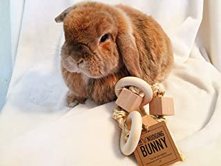 Toy for pet bunny rabbit - small ring rattle