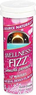 Source Naturals Wellness Fizz, Natural Berry Flavor, 10 Wafers
