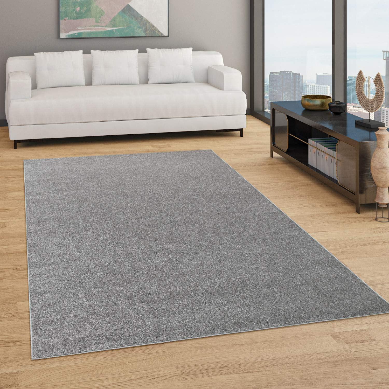 Paco Home Teppich Wohnzimmer Einfarbig Schlicht Und Modern Kurzflor,  Versch. Größen Farben, Grösse50x50 cm, FarbeAnthrazit