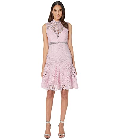 Bardot Elise Lace Dress (Washed Pink) Women