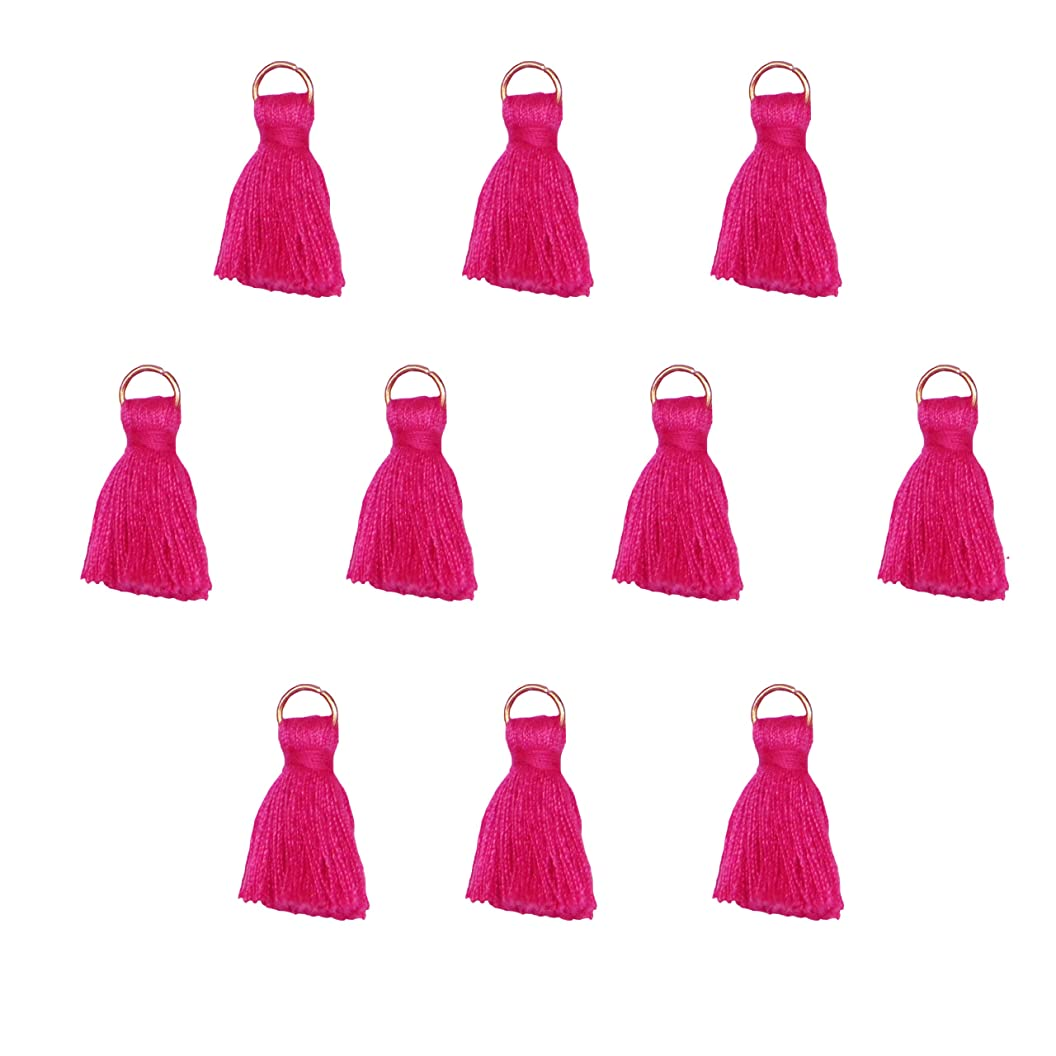 Tassels for Jewelry Making, Crafts, Decor, DIY - Mini 1 inch - White, Black, Navy Blue, Pink, Red, Green, Purple - for Earrings, Necklace, Bracelet, Mala, Pillows, Zipper - 10 pcs Pack (Pink) grsoklznkbe32