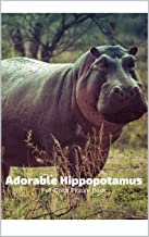 Adorable  Hippopotamus Full-Color Picture Book: Hippo Picture Book for Children, Seniors and Alzheimer's Patients -Nature Animals Wildlife