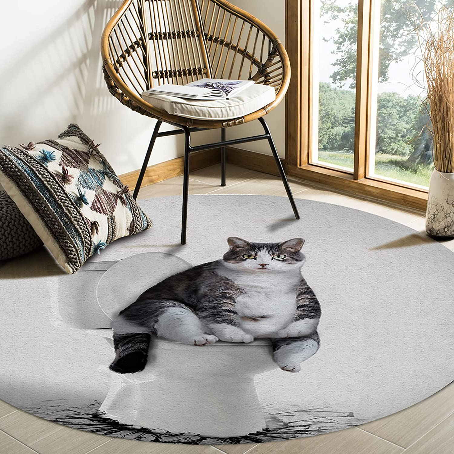 MuswannaA Round Area Rug- 6ft Diameter Cute Cat Sitting T The Max Memphis Mall 84% OFF on