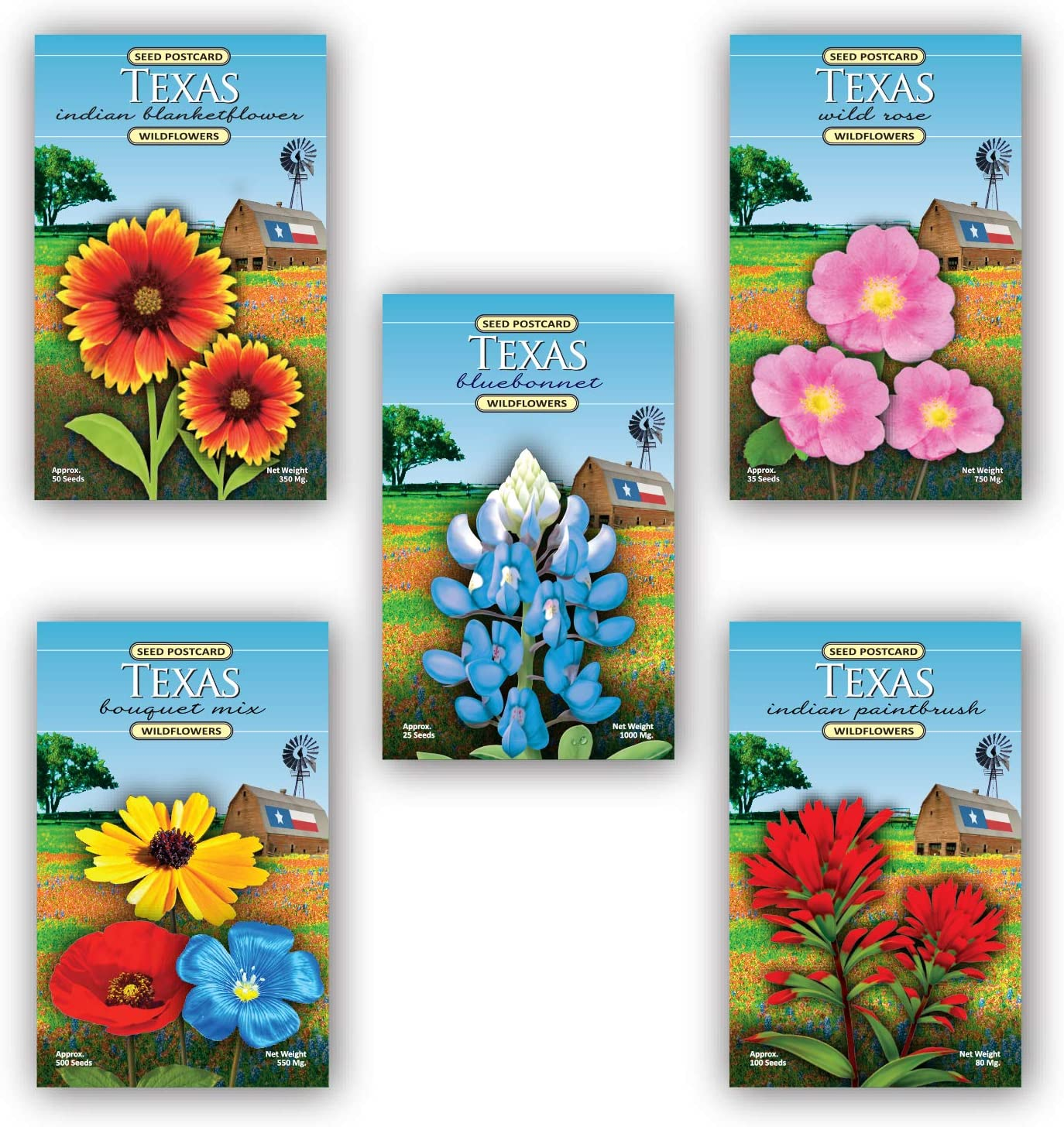 Texas Wildflowers Max 87% OFF - 5 Seed Rose Includes New Orleans Mall Bl Assortment Packet