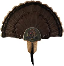 turkey taxidermy plaques