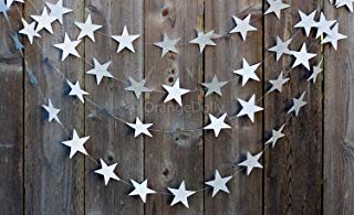 20 Feet Sliver Glitter Star Garland |Twinkle Twinkle Little Star Glitter Star Garland Gold Garland, Wedding Garland, Gold Decor, Birthday Garland, Sliver Party Decorations, Decorations (Sliver)