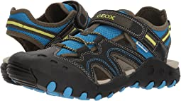 Geox Kids - Kyle 12 (Big Kid)