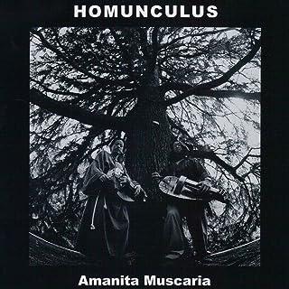 Amanita Muscaria / アマニタ・ムスカリア