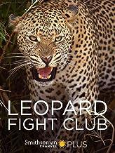 Leopard Fight Club