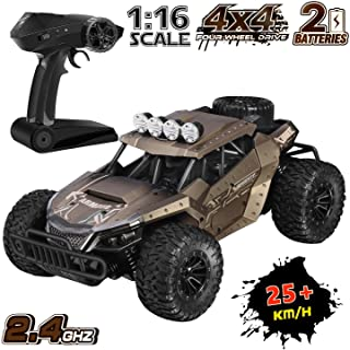 Remote Control Car, ShinePick High Speed RC Car, Off Road Truck, 2.4 Ghz 1:16 Scale High Speed Monster Truck with 2 Rechargeable Batteries Best Gift for Kids and Adults