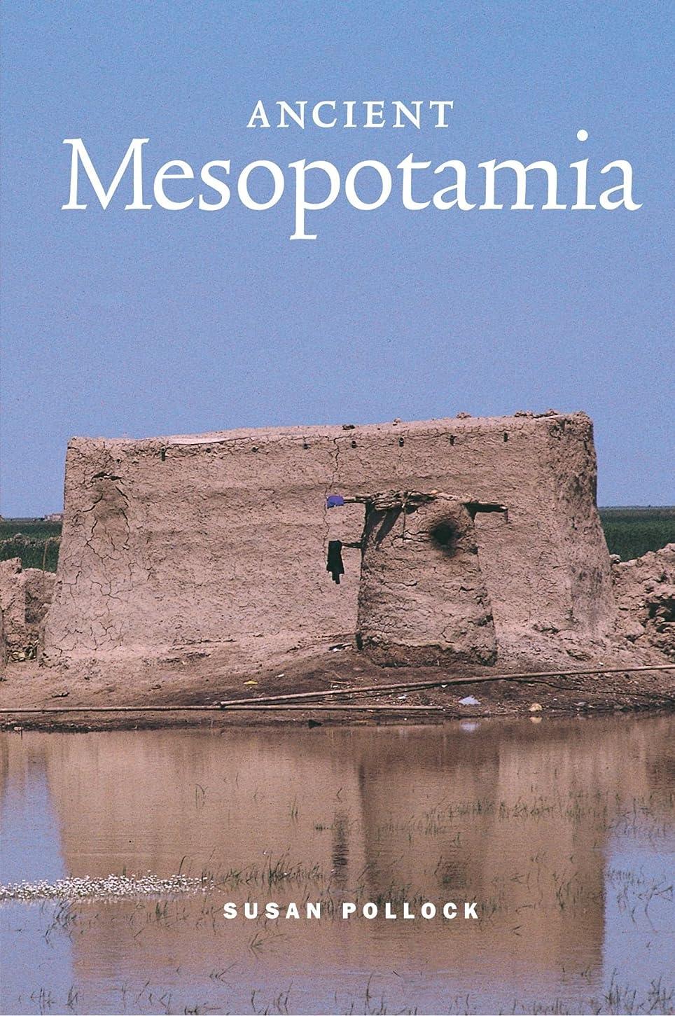 メディアタイト追記Ancient Mesopotamia (Case Studies in Early Societies)