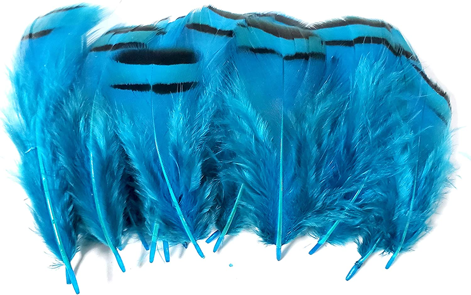 2-3 inch 50 Pcs DIY Craft White Lady Amherst Pheasant Artificial Feathers Party Dress-ups