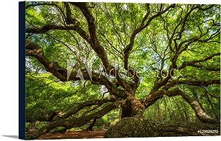 angel oak canvas