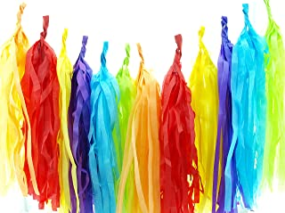Circus Garland Red, Orange, Yellow, Green, Blue, Purple Summer Party Tassels (Set of 30) - Rainbow Party Supplies, Unicorn Tissue Paper Tassel, Circus Birthday Party Decorations Banner Backdrop
