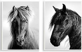 Suchergebnis Auf Amazon De Fur Pferdeposter