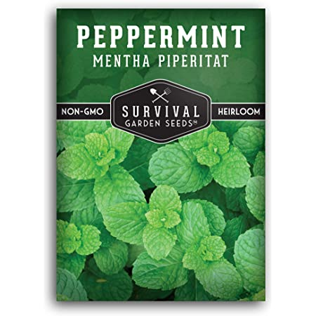 Survival Garden Seeds - Peppermint Seed for Planting - Mentha Piperita Packet with Instructions to Plant and Grow Your Home Herb Garden - Non-GMO Heirloom Variety