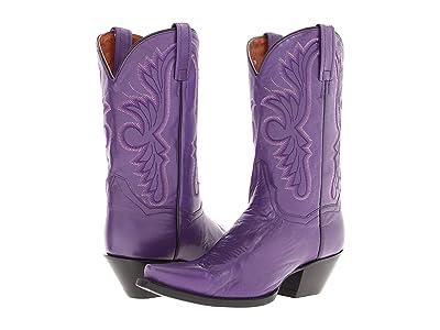 Dan Post Wild Ride (Purple) Cowboy Boots