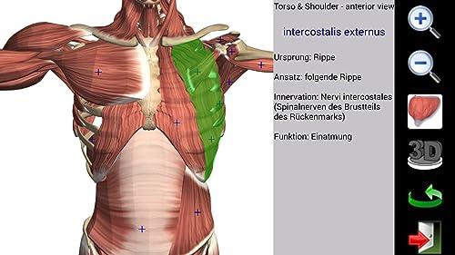 『Visual Muscles 3D』の10枚目の画像