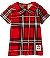 mini rodini - Check Collar Tee (Infant/Toddler/Little Kids/Big Kids)