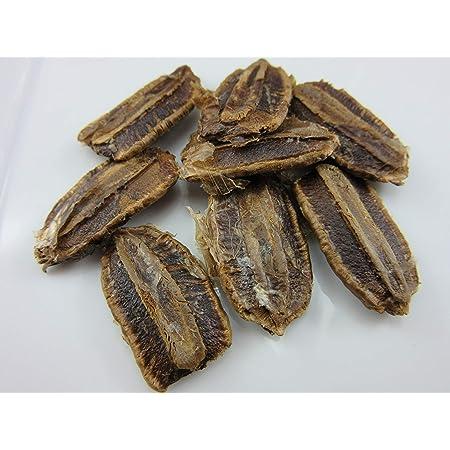 10 Seeds Hard Shelled Corsican Gourd Seeds