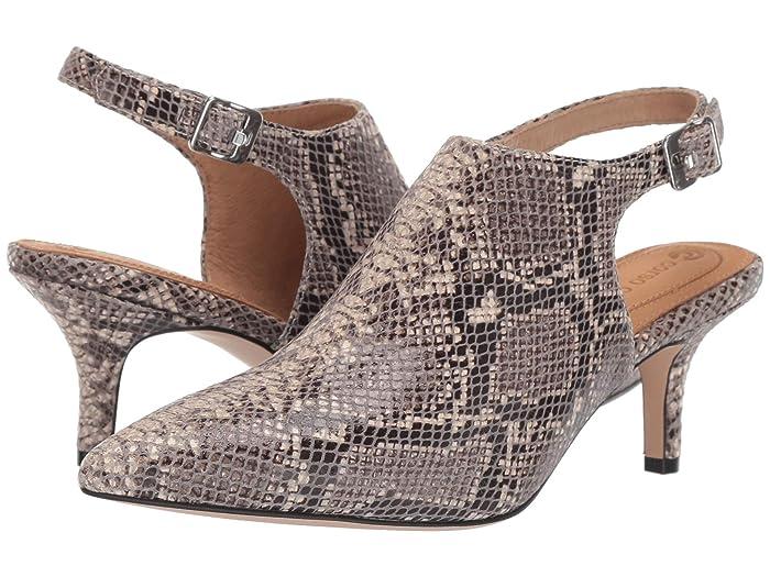 CC Corso Como  Dionna (Natural Pythonius) Womens Shoes