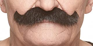 Mustaches Fake Mustache, Self Adhesive, Novelty, Rocking Grandpa's False Facial Hair, Costume Accessory for Adults