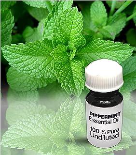 Peppermint Essential Oil / 100% Pure Peppermint Undiluted Essential Oil Premium Quality (250 ML)