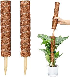 Amazon.es: tutores para plantas