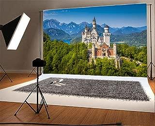 neuschwanstein castle background