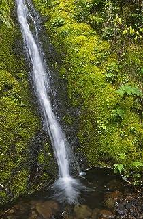 A mountain brook cascades down Saddle Mountain Hamlet Oregon United States of America Poster Print by Robert L Potts Desig...