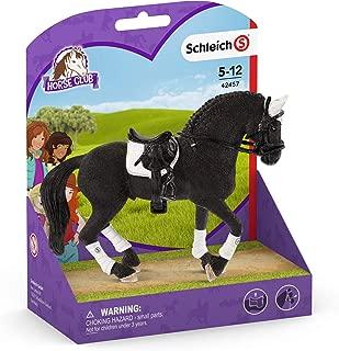 Frisian Stallion Riding Tournament