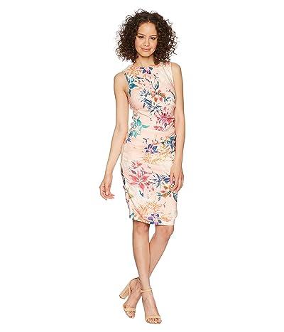 Nicole Miller Lauren Sheath Dress (Blush Multi) Women