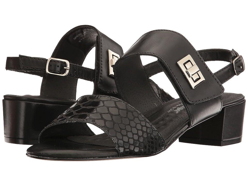 Walking Cradles Milan (Black Leather/Black Cobra Print) Women
